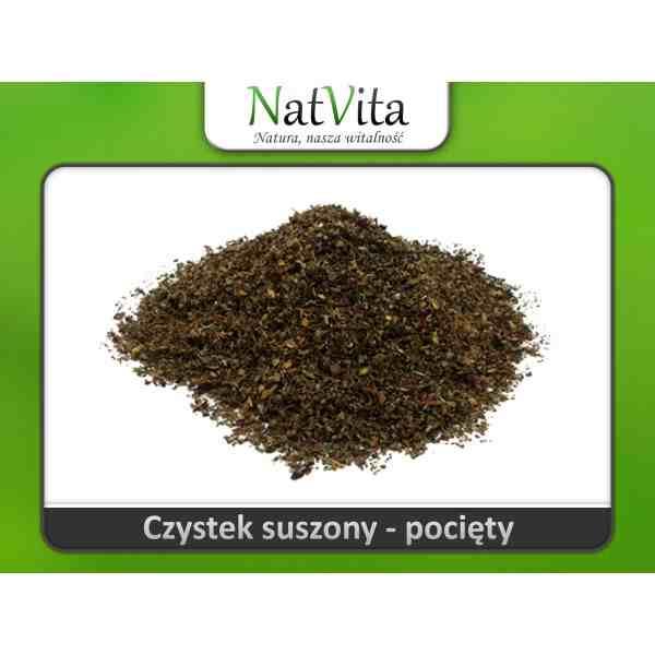 Czystek Herbatka z czystka na borelie